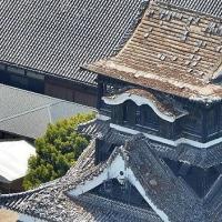 本を買って熊本城修復