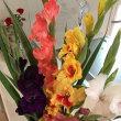 家の中にも花を。。。