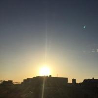 秋の陽射しが爽やかな朝ですね(^o^)(^o^)