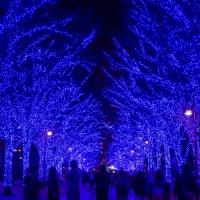 青の洞窟 SHIBUYA