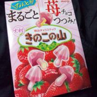 まるごと莓チョコつつみ!