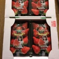 ふるさと納税~ 佐賀県伊万里市からお礼の品
