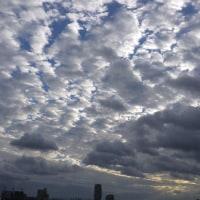 2016-10-23    その日の雲   NO.9