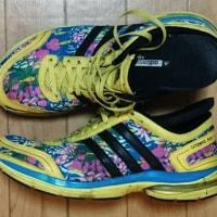 歩くための道具・靴 AdiZero Age