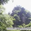 2017、7、12  多摩ハイキング同好会の仲間と《神戸岩と払沢の滝》に行って来ました