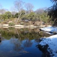 春を感じに行ってきました・・・・・赤城自然園。