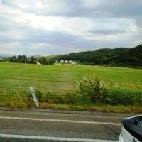 日本の原風景はこれでしょ