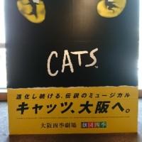 大阪キャッツ