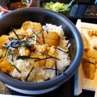 伊達へのドライブ5)カモメとウニ丼・ベビーホタテ