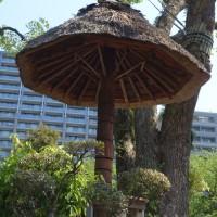 縮景園(広島)(2017.4.28)