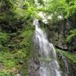 山岳点景:緑、飛沫く―八岳の滝