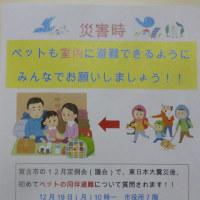 ☆おまかせ注文&お知らせ☆