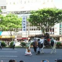 青葉祭り 山鉾巡行