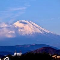11/Dec 朝の富士山とタゲリとカワセミとイカル