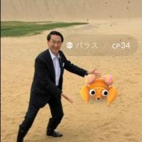 <不正選挙フェス>東京にそびえたつ無効票チョモランマ(選挙区無効票(青)+比例無効票(オレンジ) 小野寺光一 +