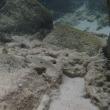 奄美の海で