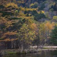 神秘のチカラ ~松本・上高地への旅6「田代池」~