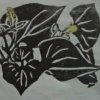 木版画 「どくだみの白い花」