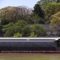 金沢diary,180日 ( 144 )