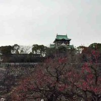大阪城梅園へ出かけました。