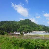2 神ノ倉山(561m:安佐北区)登山  仲間の到着