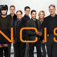 NCIS ネイビー犯罪捜査班  みんなが通ったNCISになる前の姿