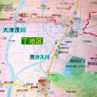 丁・柳ケ瀬遺跡の現状