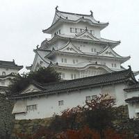 AI相手に 叡王敗れ 美しく散る 姫路城