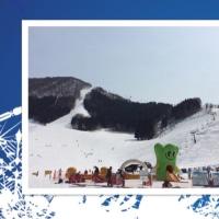 スキーすきー
