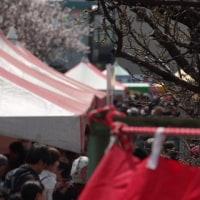 ViVa アーモンド祭