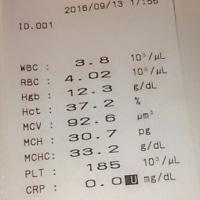 何の異常もない by Bこさん (-_-)/~~~ピシー!ピシー!