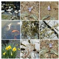 2000-03-26泉自然公園