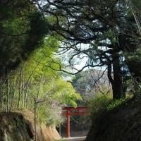 諏訪神社その4(鹿児島県曽於市)