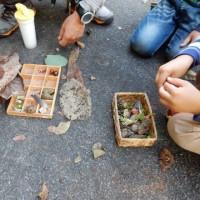 実施報告:立教大学ESD研究所×キープ協会の環境教育基礎講座「第10回 幼児期における環境教育」