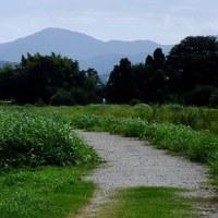 万葉アルバム(奈良):桜井市大福、三十八柱神社