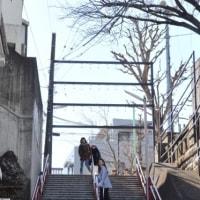 URBAN TRAIL TOKYO 2017.2.25