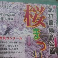 【綱島公園の桜まつり】は4月1日(土)