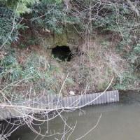 水戸の穴(2)