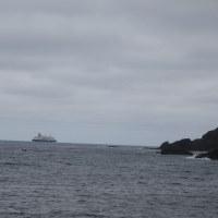 海はすっかり夏模様..今後、磯は 石鯛釣りがお勧めです