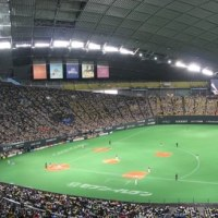 8年ぶりのファイターズ観戦in札幌ドーム!