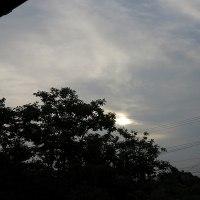 白い太陽が出る日が多い。雲のシワ、あるいは模様。