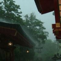 雨の太宰府天満宮