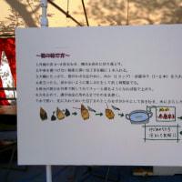 筍の茹で方(第11回長岡京たけのこフェスタ)