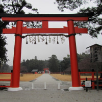 ~大津、京都、奈良の旅 第二日目 5 上賀茂神社~