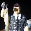 7月22日( 土)イカ釣り
