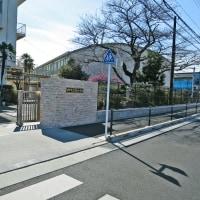 2月26日(日)一番橋から豊田用水を歩く