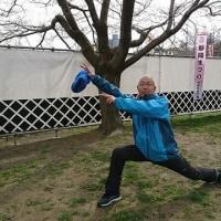 桜が咲いていない駿府城公園 1か月ぶりのマラソントレーニング