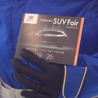 SUV Fair