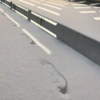 お昼ご飯☆寄せ集めの休日ランチ☆猛吹雪で積もりました^^A