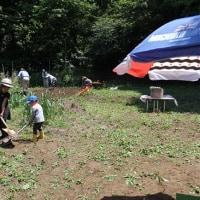 開墾 と 畝づくり
